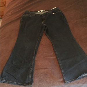 Venezia flare jeans. Size 24 petite